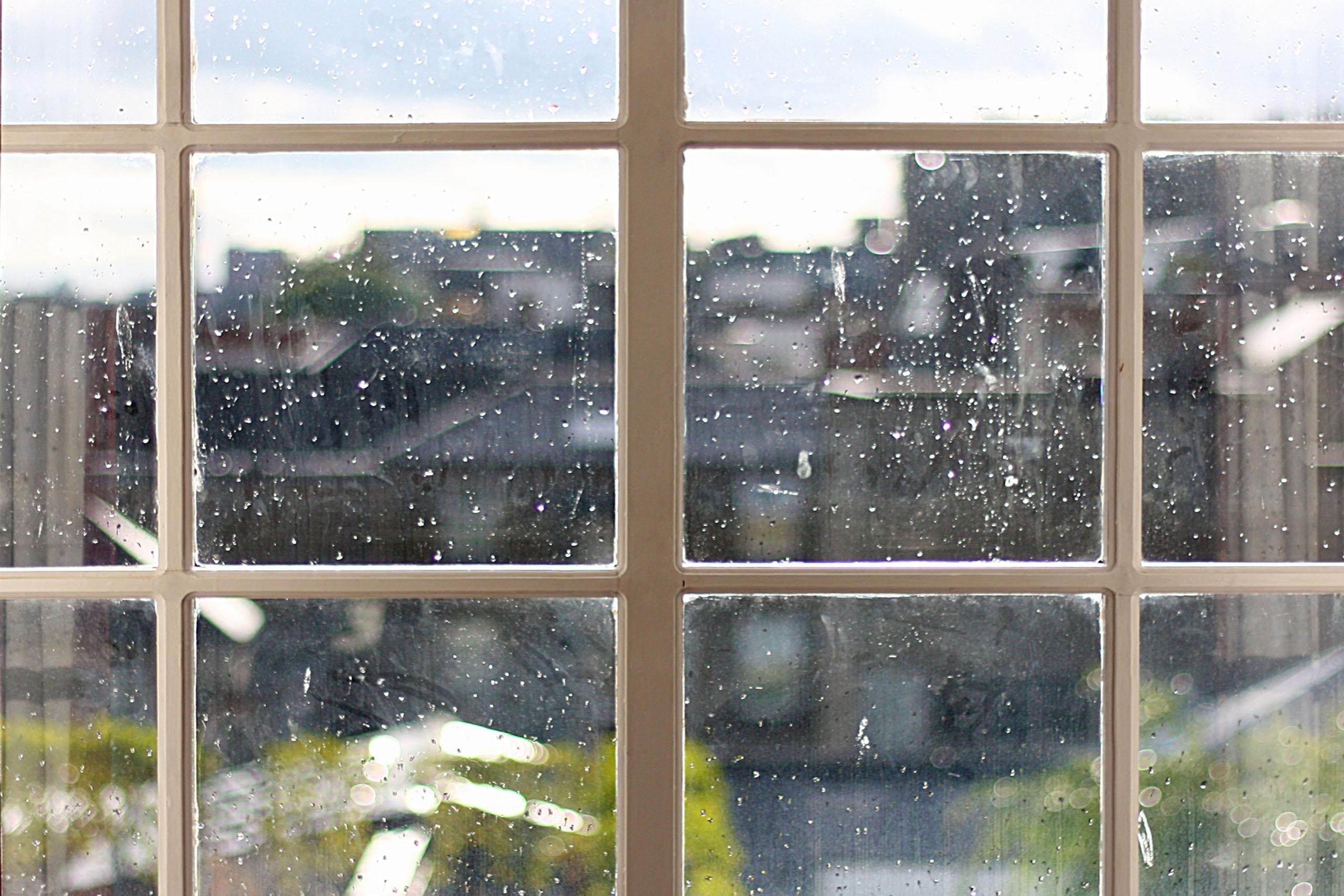 La vida detrás de las ventanas, otros microrrelato de Hebe Prado en Cafecuento ediciones